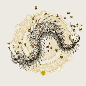 fistula-coffinworm-big